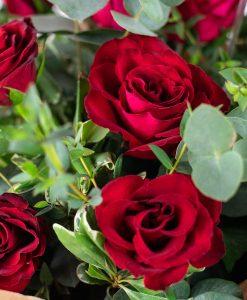 sweetheart-casa-petals-online-flower-shop-dubai-2